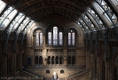 Natural History Museum_02